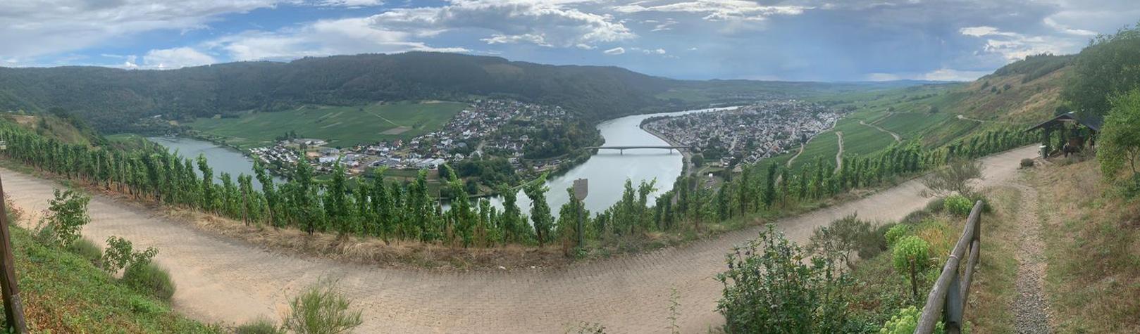 Heerlijke wijnen en toch dichtbij: wijnreisje Pfalz & Mosel